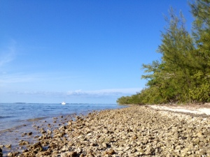 Key West beaches: all rock and no sand