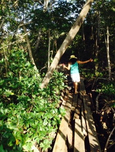 "Rosie exploring the resort on a highly questionable ""bridge"""
