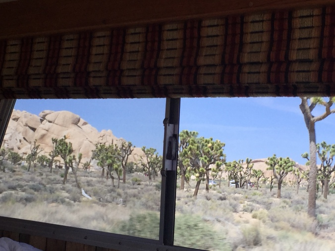 Tired of views from our front windshield?  Then we shall vary things with a side window shot.