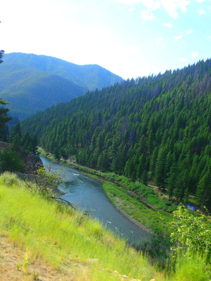 Beside the Salmon River