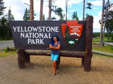 Yellowstone Sign Rose