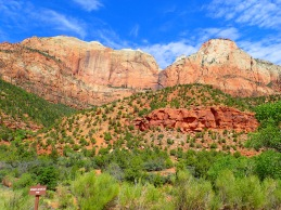 Red rocks zion 1