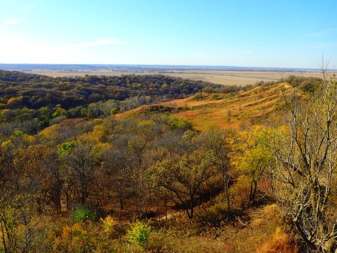 Loews Hills prairie