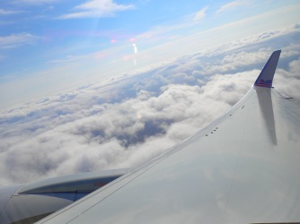 The View From Our Wing