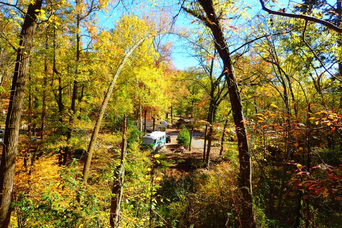 View of our site from a point on the adjacent hiking trail
