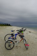 Bikes to the beach