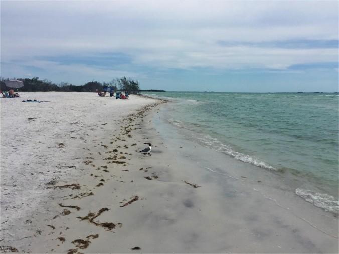 4-fort-desoto-beach
