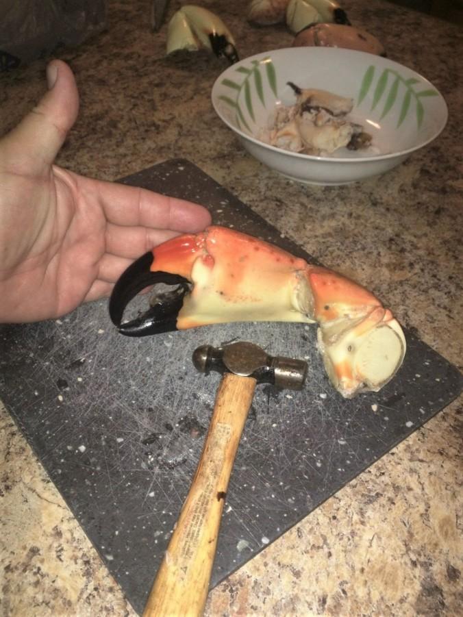 7-crab-claw