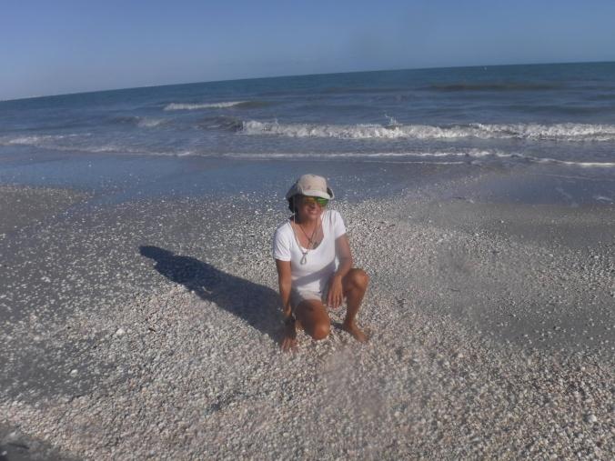 beach-rose