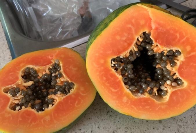 3-wekiva-papayas